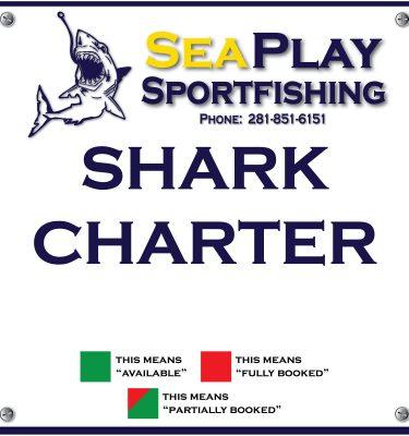Shark Charter