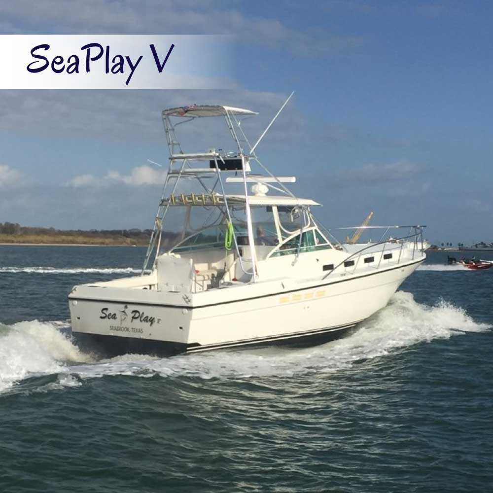 Charter Seaplay 5